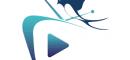 Profile Radio Television Hirondelle Tv Channels