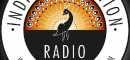 Profile Indie Imagination Radio Tv Channels