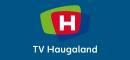 Profile TV Haugaland Tv Channels